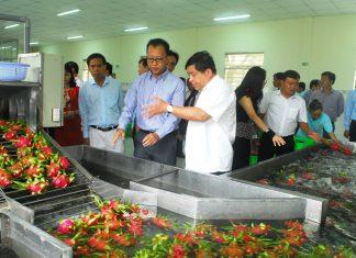 Tiền Giang cần tạo điều kiện cho doanh nghiệp đầu tư vào nông nghiệp