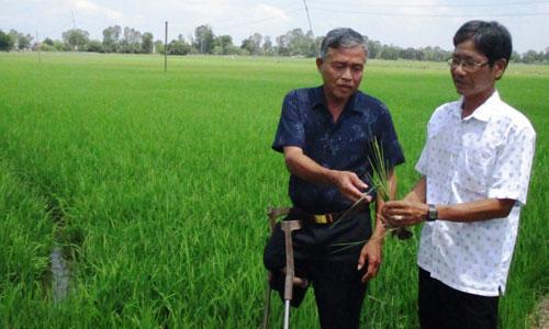 Ông Mãnh trao đổi kinh nghiệm sản xuất với cựu chiến binh địa phương.