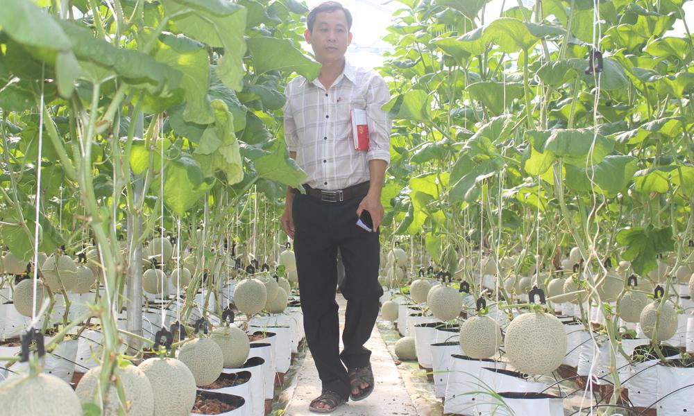 Tham quan mô hình nông nghiệp ứng dụng công nghệ cao tại ấp Bình Phong, xã Tân Mỹ Chánh.