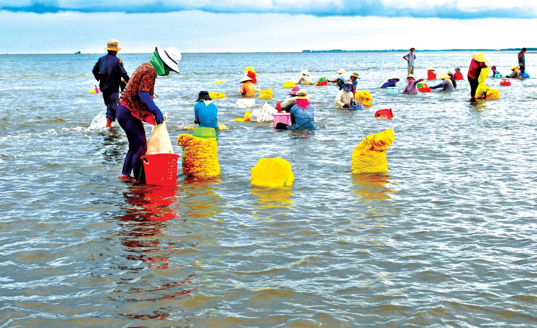 Thủy sản là ngành kinh tế quan trọng đối với các huyện ven biển phí Đông của tỉnh. Ảnh: Hữu Dư