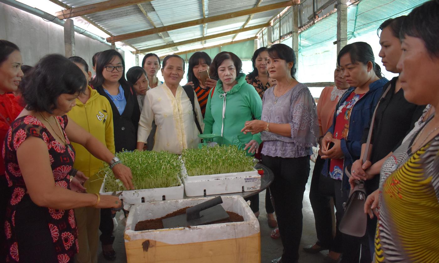 Chị ĐồngThị Thu Hoài, Giám đốcHTX Trường Phát hướng dẫn trồng rau mầm