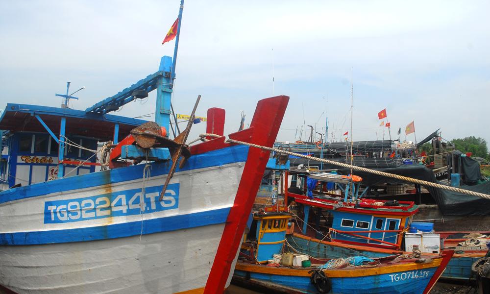 Nhiều tàu thuyền ở huyện Gò Công Đông đã vào nơi tránh trú bão.