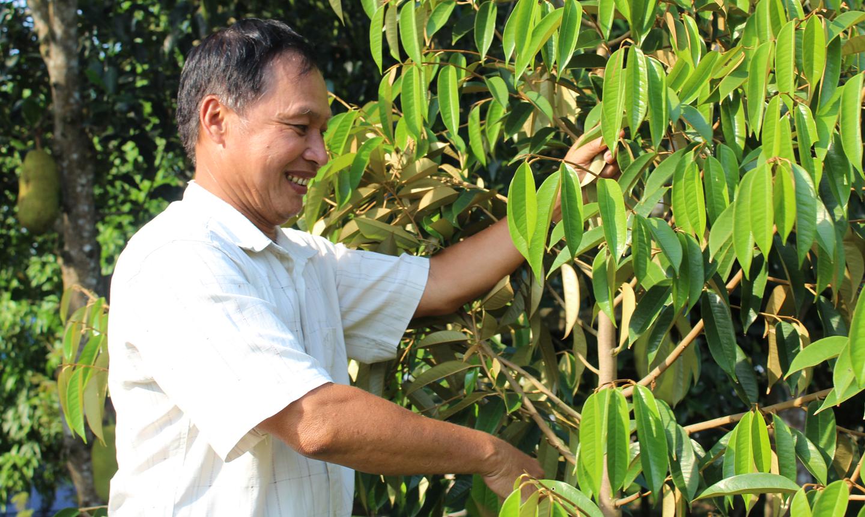 """Anh Thái Văn Tràng là người """"mở đường"""" cho cây sầu riêng phát triển ở vùng """"rốn"""" lũ - xã Mỹ Lợi A."""