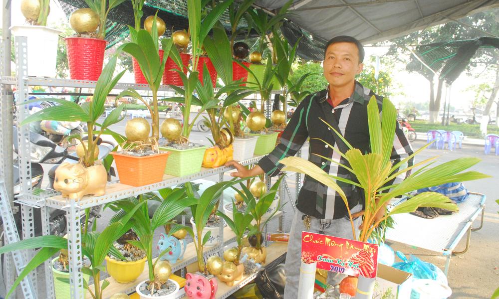 Dừa bonsai được bày bán với giá 300 ngàn đồng/cây.