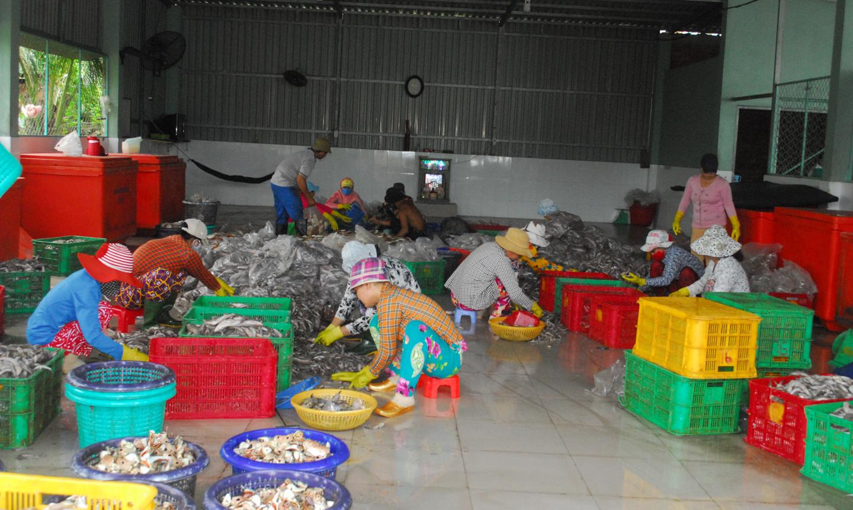 Công việc gấp rút tại một công ty hải sản trên địa bàn thị trấn Vàm Láng vào những ngày cuối năm.