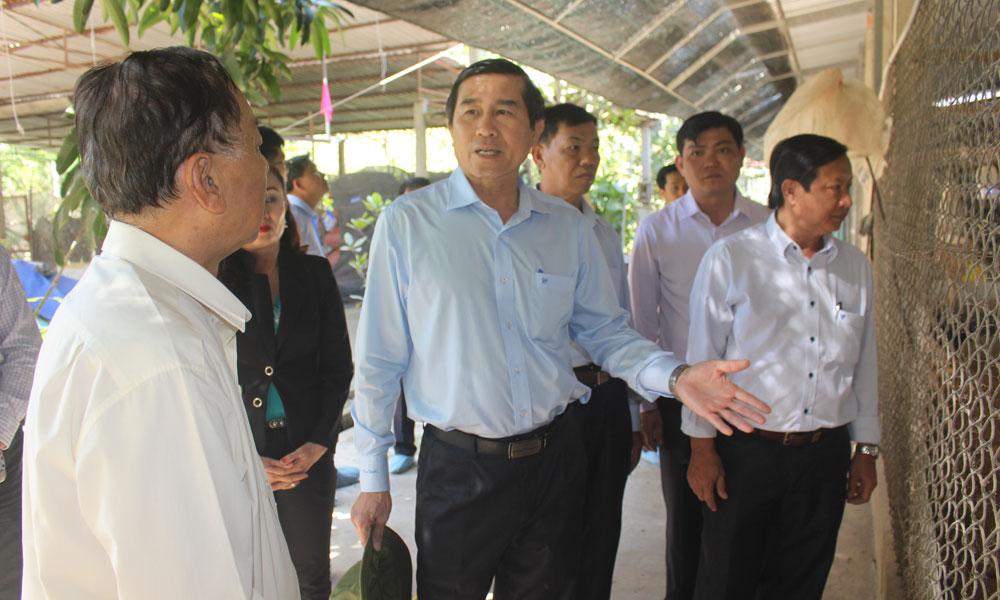 Chủ tịch UBND tỉnh Lê Văn Hưởng thăm HTX Chăn nuôi - Thủy sản Gò Công.