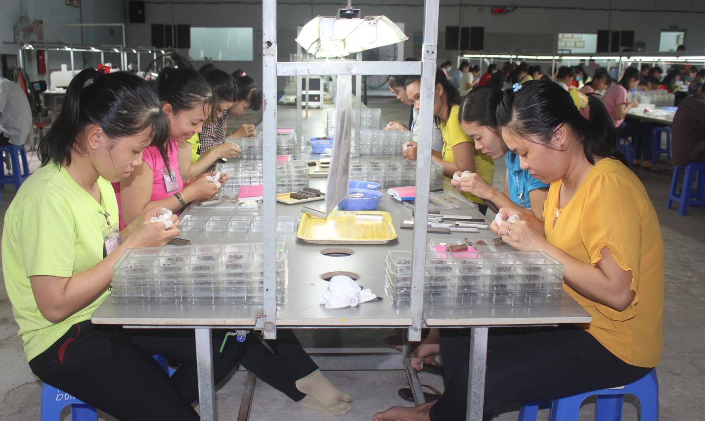 Doanh nghiệp tư nhân Focus (thị trấn Vĩnh Bình, huyện Gò Công Tây) là một trong những doanh nghiệp mới đầu tư vào Vùng phía Đông.