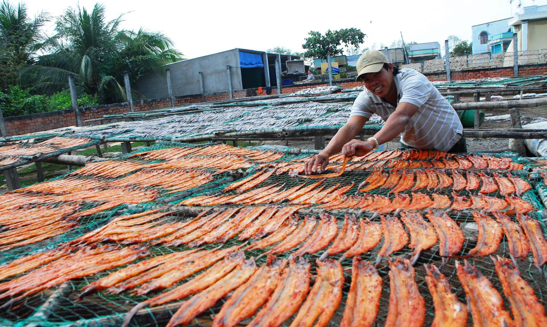 Những ngày cuối năm, ngư dân tranh thủ phơi cá phục vụ nhu cầu tết.