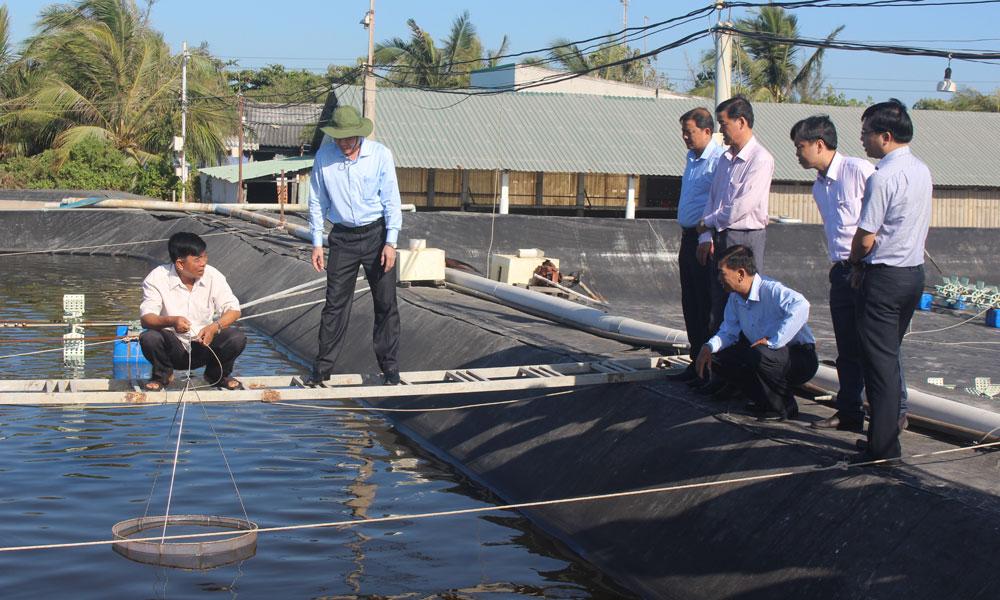 Chủ tịch UBND tỉnh Lê Văn Hưởng hộ ông Trần Văn Vinh (huyện Gò Công Đông) với mô hình nuôi tôm 2 giai đoạn.