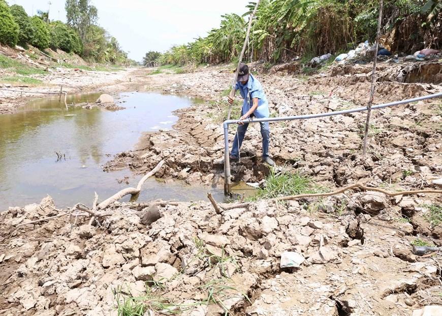 Người nông dân ở xã Long Hòa, thị xã Gò Công không thể lấy được nước phục vụ sản xuất từ kênh N14 trong một vài ngày tới. (Ảnh: Vũ Sinh/TTXVN)