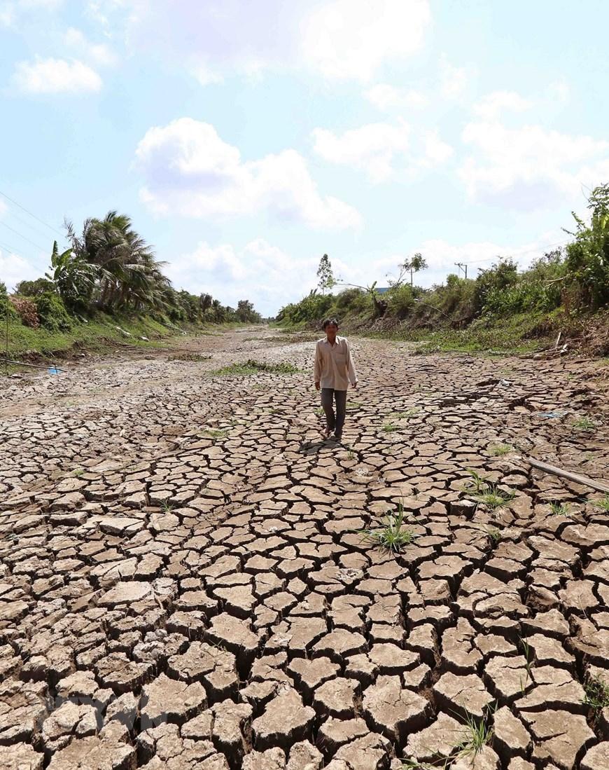 Người dân ở xã Long Hòa, thị xã Gò Công mong chờ mùa mưa đến sớm. (Ảnh: Vũ Sinh/TTXVN)